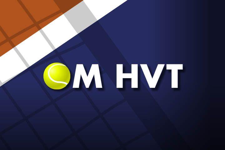 Billede til Information om HVT